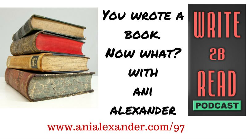 You Wrote a Book. Now What?